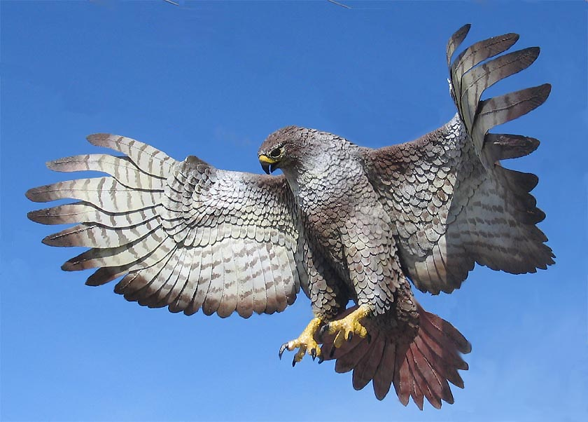 red tailed hawk thor loki manitowoc wi official website