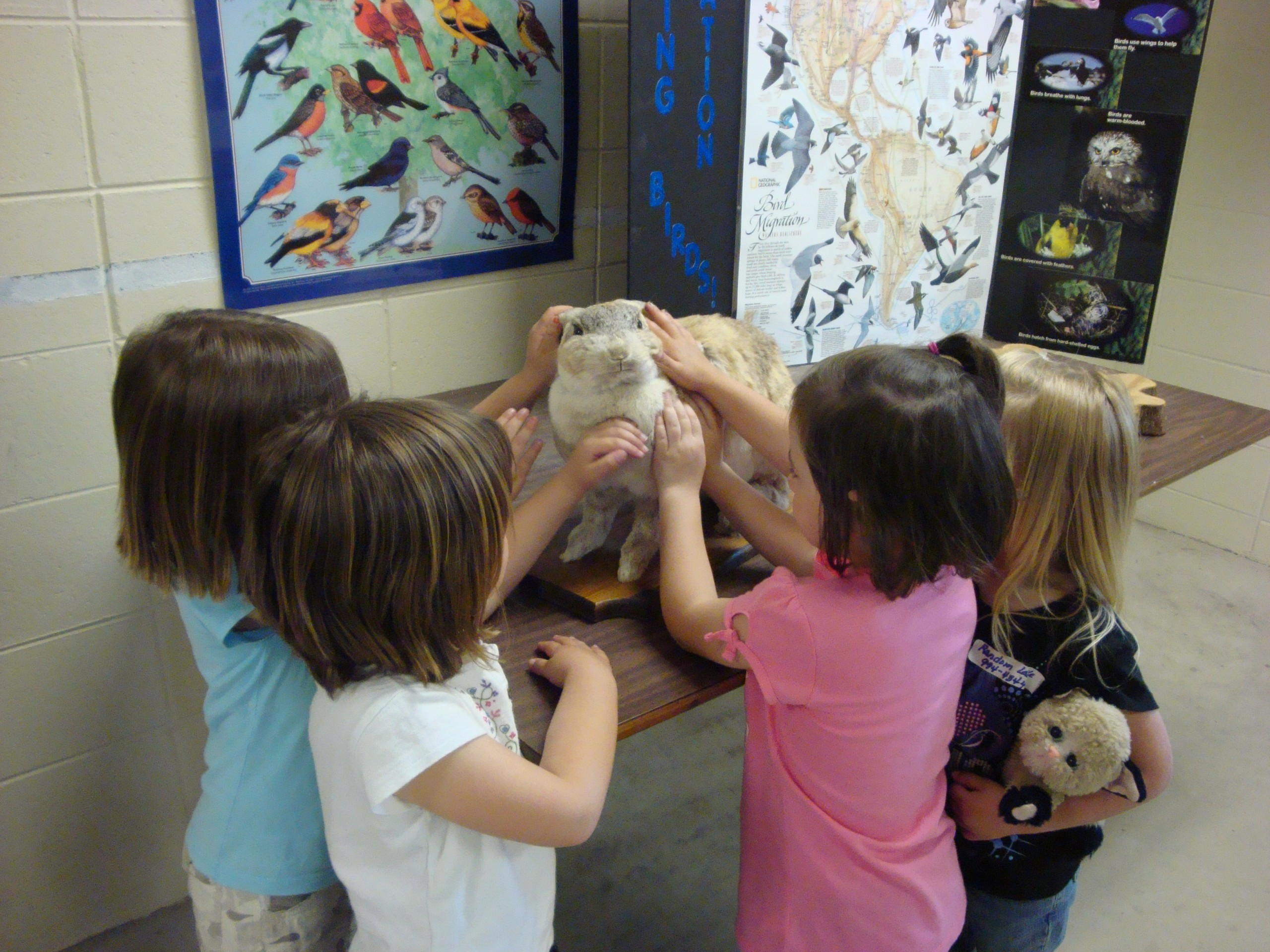 Children petting rabbit in Educational Building